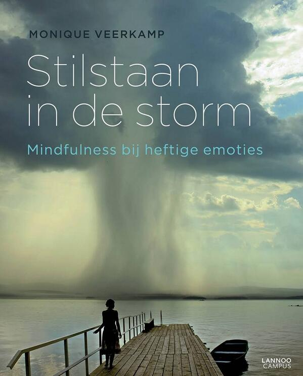 Boek stilstaan in de storm